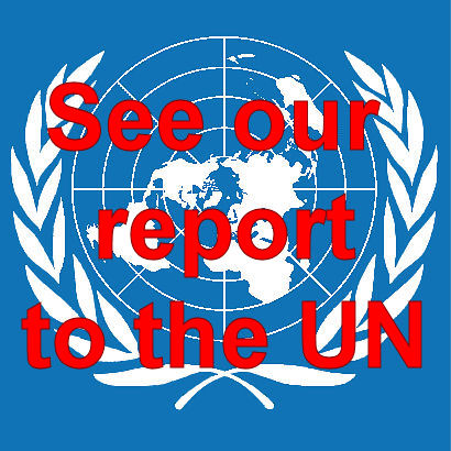 See our report to the UNCRPD