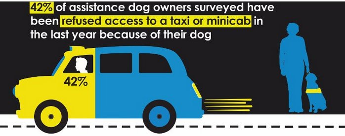 42% of assistance dog owners were turned away by a taxi or minicab